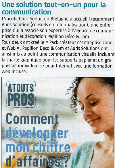 Article auris solutions cci brest