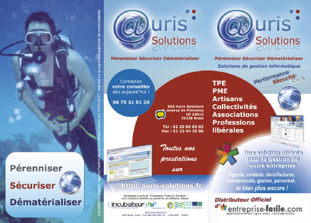 flyer auris solutions