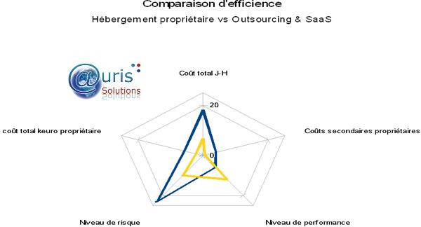 Efficience du SI, Auris Solutions